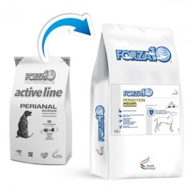 Periaction Active - Forza10