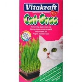 Cat Grass - Vitakraft