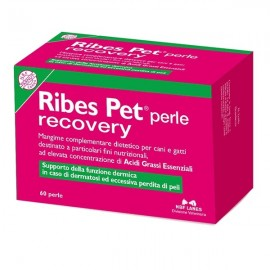 Ribes Pet Perle Recovery - Nbf Lanes