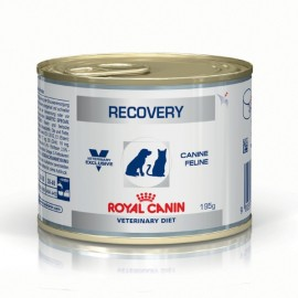 Veterinary Diet Recovery - Royal Canin